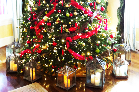 mcta vp tree wahmhoff - How To Keep Christmas Tree From Drying Out